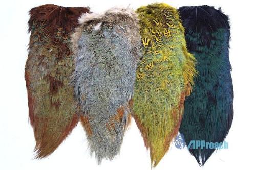 環頸雉尾毛片(棕,天然,黃,黑)