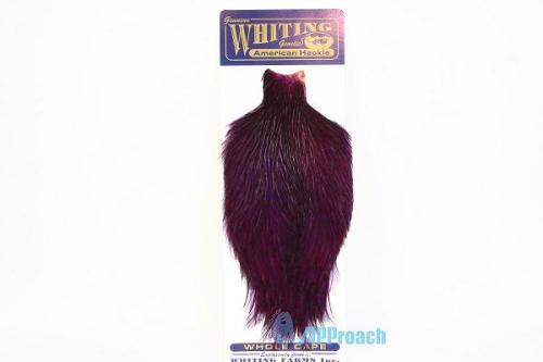 美國雄雞肩部蓑毛 (紫)1