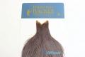 Whiting 乾毛鉤肩部蓑毛(暖灰)2
